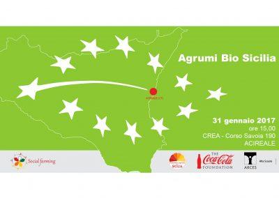 agrumi-biologico